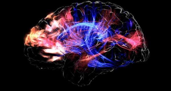 Mickey-Hart-Brain-Music-600x320